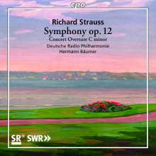 Richard Strauss (1864-1949): Symphonie f-moll op.12 (1884), CD