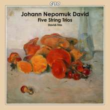 Johann Nepomuk David (1895-1977): Streichtrios op.33 Nr.1-4, CD
