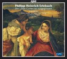 Philipp Heinrich Erlebach (1657-1714): Kantaten zu Festtagen, 2 CDs