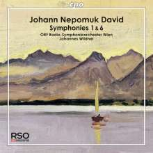 Johann Nepomuk David (1895-1977): Symphonien Nr.1 & 6, CD