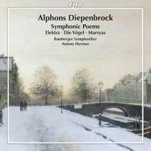 Alphons Diepenbrock (1862-1921): Symphonische Dichtungen, CD