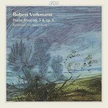 Robert Volkmann (1815-1883): Klaviertrios op.3 & op.5, CD