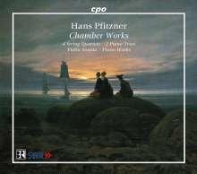 Hans Pfitzner (1869-1949): Kammermusik, 4 CDs