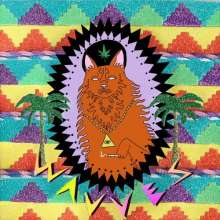 Wavves: King Of The Beach, CD