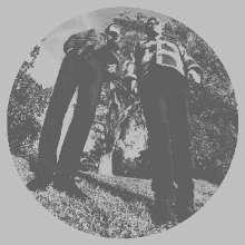 Ty Segall: Hair, LP