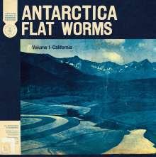 Flat Worms: Antarctica, CD