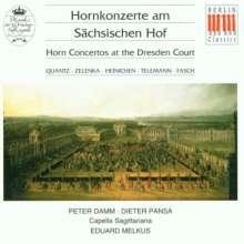 P.Damm-Hornkonzerte am sächsischen Hof, CD