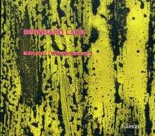 Bernhard Lang (geb. 1957): Differenz/Wiederholung 2, CD