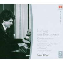 Ludwig van Beethoven (1770-1827): Klaviersonaten Nr.17,18,24,29, 2 CDs