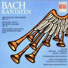 Johann Sebastian Bach (1685-1750): Kantaten BWV 1,68,172, CD