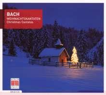 Johann Sebastian Bach (1685-1750): Kantaten BWV 1,40,61, CD
