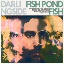 Darlingside: Fish Pond Fish, CD
