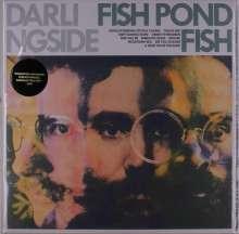 Darlingside: Fish Pond Fish, LP