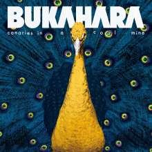 Bukahara: Canaries In A Coal Mine, CD