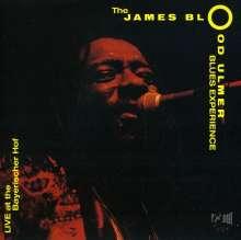 James Blood Ulmer (geb. 1942): Blues Experience - Live At Bayrischer Hof, CD