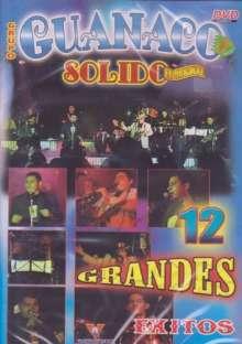 Guanaco Solido: 12 Grandes Exitos, DVD