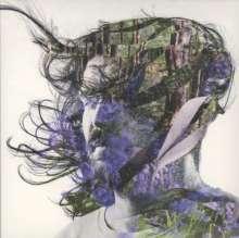 Bibio (Stephen Wilkinson): Ribbons, CD