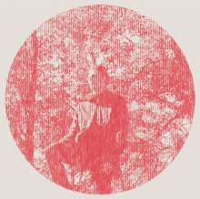 Owen Pallett: Heartland (180g), 2 LPs
