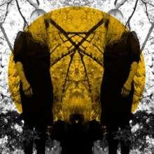 Austra: Feel It Break, LP