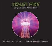 Jon Gibson (1940-2020): Violet Fire, 2 CDs