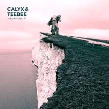 Calyx & Teebee: Fabric Live 76, CD