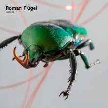 Roman Flügel: Fabric 95, CD