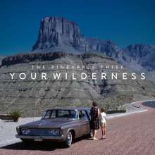 The Pineapple Thief: Your Wilderness (180g), LP