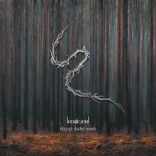 Lunatic Soul: Through Shaded Woods (180g), LP