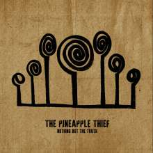 The Pineapple Thief: Nothing But The Truth, 2 LPs