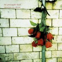 The Pineapple Thief: Variations On A Dream (remastered) (180g), 2 LPs