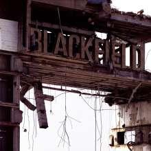 Blackfield  (Steven Wilson): Blackfield II (remastered) (180g), LP