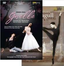 Ballett der Mailänder Scala:Giselle (Adam), 2 DVDs