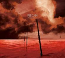 Pelican: What We All Come To Need, CD