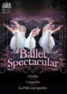 Royal Ballet Covent Garden - Ballet Spectacular, 3 DVDs