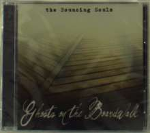 The Bouncing Souls: Ghosts On The Boardwalk, CD