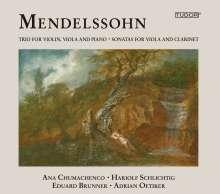 Felix Mendelssohn Bartholdy (1809-1847): Sonate für Viola & Klavier c-moll, CD