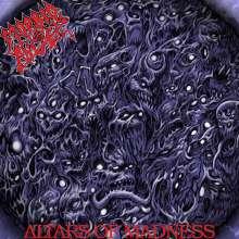 Morbid Angel: Altars Of Madness (FDR Remaster), CD