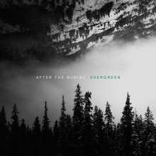 After The Burial: Evergreen, LP