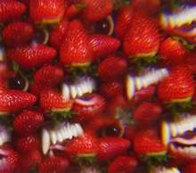 Thee Oh Sees: Floating Coffin, CD