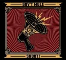 Gov't Mule: Shout ! (180g), 4 LPs