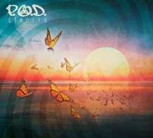 P.O.D. (Payable On Death): Circles (180g), LP