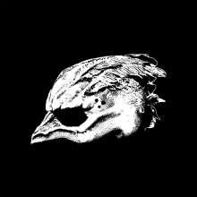 Legend Of The Seagullmen: Legend Of The Seagullmen, LP