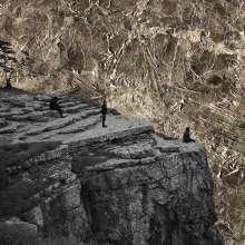 Esben & The Witch: Nowhere, LP
