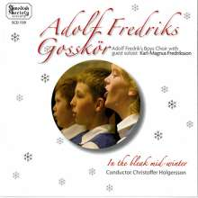 Adolf Fredrik Boys Choir - In the Bleak Mid-Winter, CD