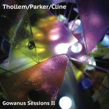 Thollem, William Parker & Nels Cline: Gowanus Sessions II, LP