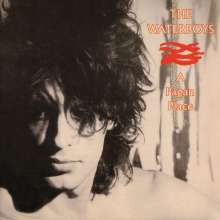 The Waterboys: A Pagan Place (remastered) (180g), LP