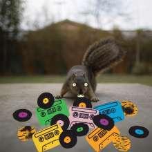 Evidence (Rap/Hip-Hop): Squirrel Tape Instrumentals Vol.1 (Limited Edition) (Colored Vinyl), LP