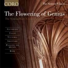 The Sixteen - Flowering Of Genius, CD
