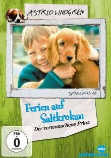 Ferien auf Saltkrokan 2: Der verwunschene Prinz, DVD
