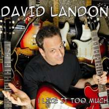 David Landon: I Like It Too Much, CD